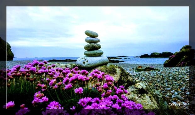 Iona Stones